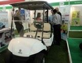 Yamaha Golf cart at IGIA Expo 2014 At Pune | Yamaha golf cart,Yamaha golfcar, Yamaha electric car, Yamaha battery car